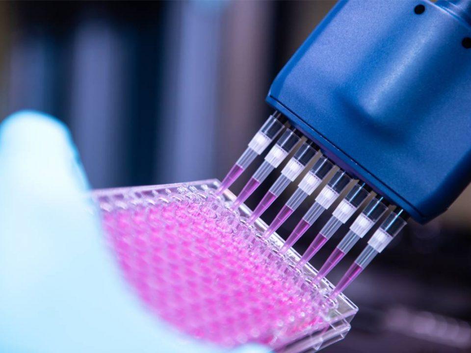 Investigación in vitro en el Centro de Investigación Novo Nordisk Oxford (NNRCO). (Foto: Novo Nordisk).
